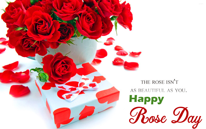 Happy Rose Day Beautiful Wishes Wallpaper