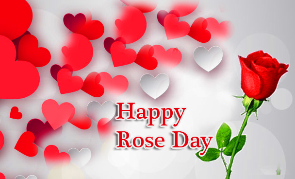 Happy Rose Day Greeting Pic