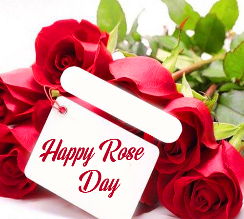 Happy Rose Day Message Image HD