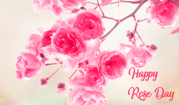 Happy Rose Day with Pink Roses