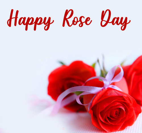 Happy Rose Day with Red Roses Picture