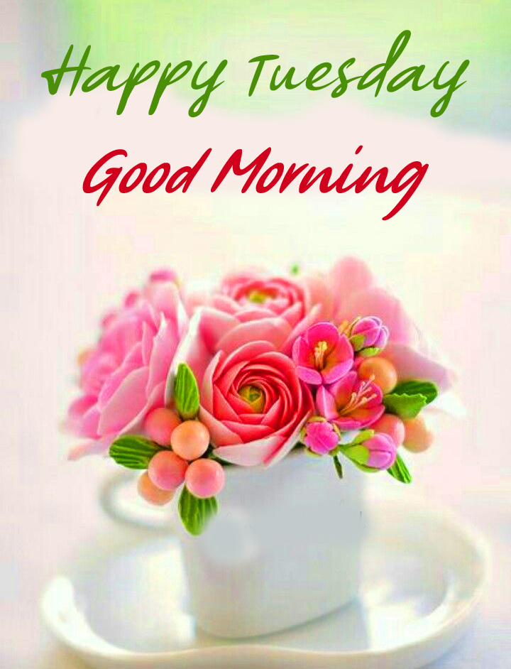 Happy Tuesday Good Morning Wish with Flowers Cup
