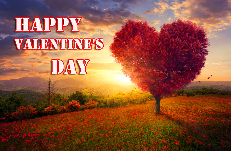 Heart Tree Happy Valentines Day Wallpaper HD