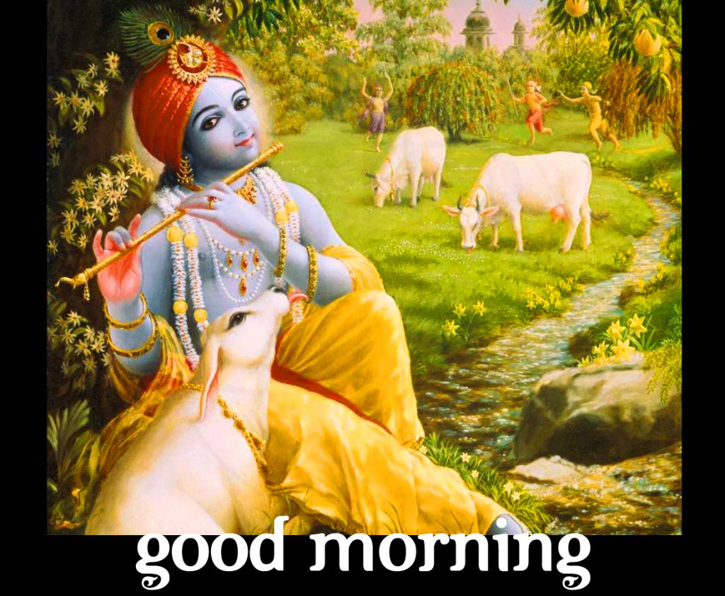 64+ Good Morning Image Krishna