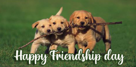 Latest Cute Happy Friendship Day Image