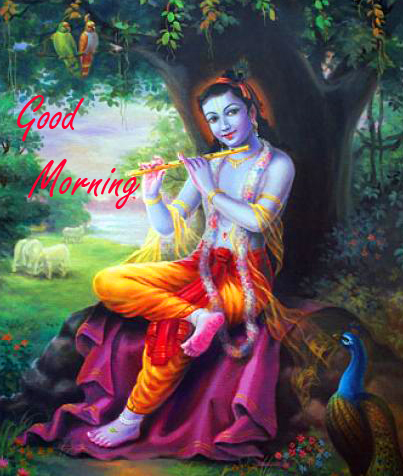 Latest Good Morning Krishna Image