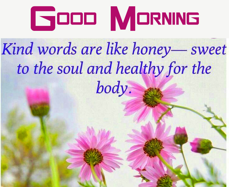 Lovely Blessed Quote Good Morning Image