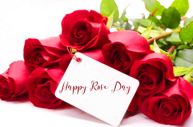 Lovely Happy Rose Day Card Image