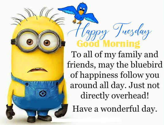 Minion Good Morning Happy Tuesday Quotes Image