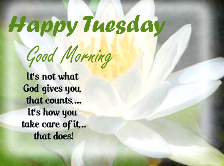 Quote Good Morning Happy Tuesday Image HD