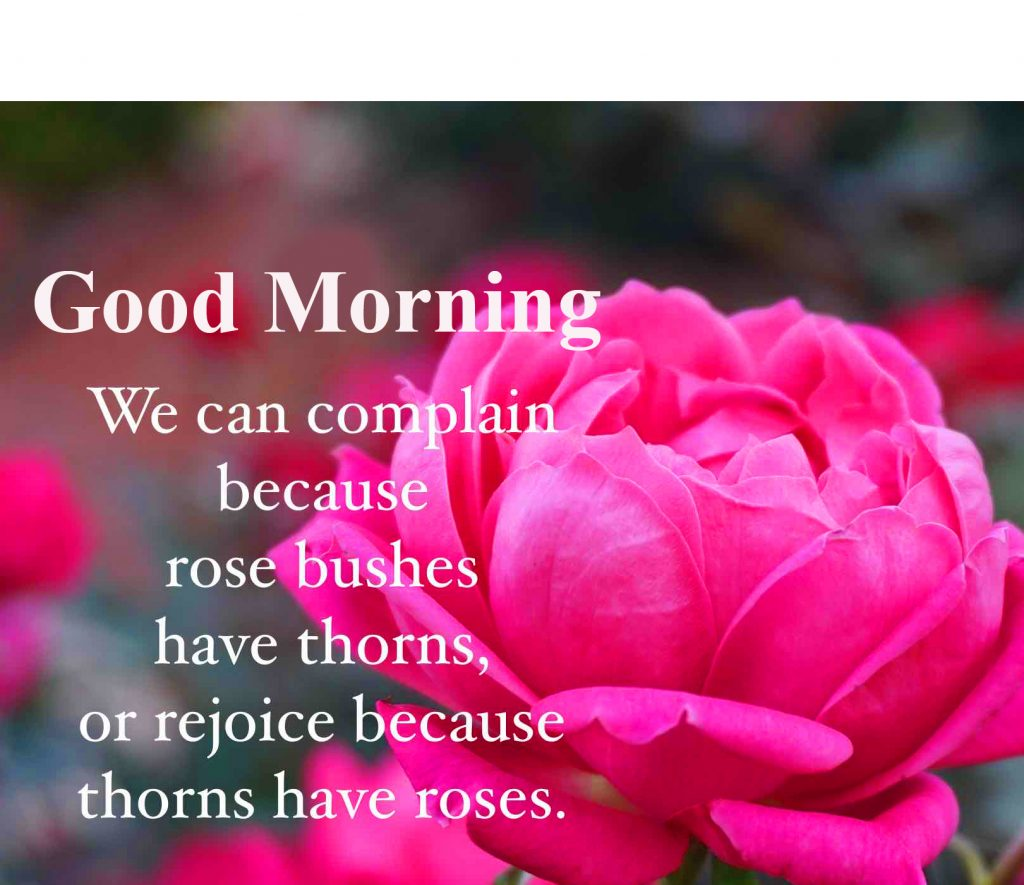 52+ Beautiful Quotes Good Morning Images HD