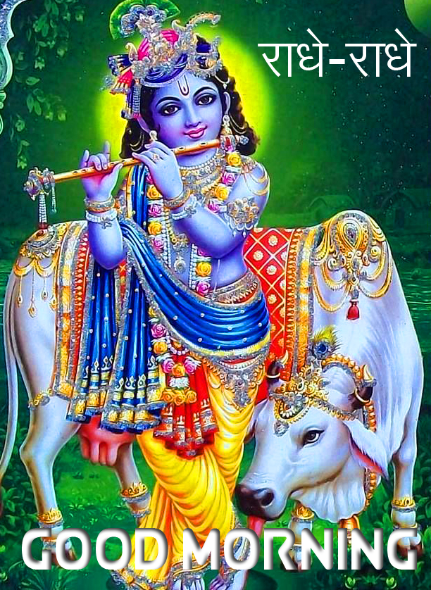 Radhe Radhe Good Morning Krishna Pic