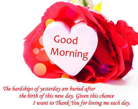 Red Rose with Good Morning Message Pic