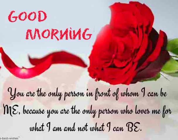 Red Rose with Good Morning Wish and Love Quotes