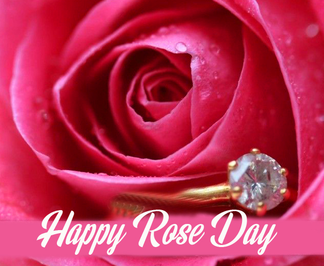 Rose with Happy Rose Day Message