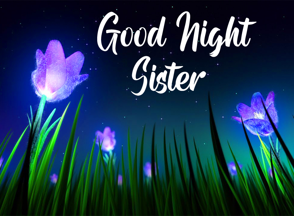 Shining Flowers with Good Night Sister Wish