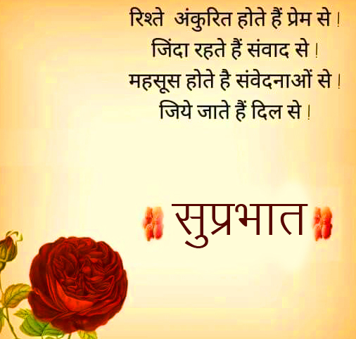 Suprabhat Wish with Rose Quotes