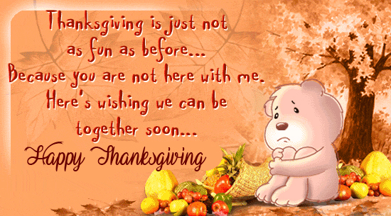 Teddy images with Happy Thanksgiving