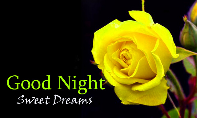 Yellow Flowers with Good Night Sweet Dreams Wish