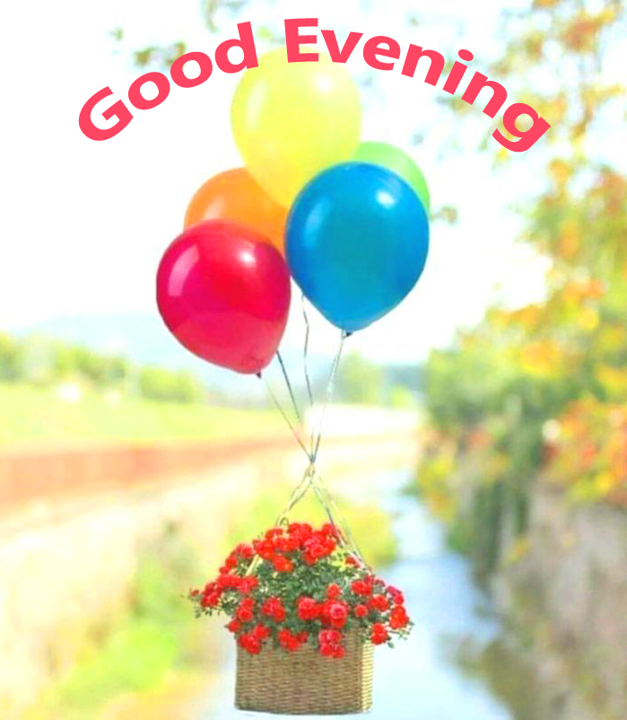 Balloons with Basket and Good Evening Wish