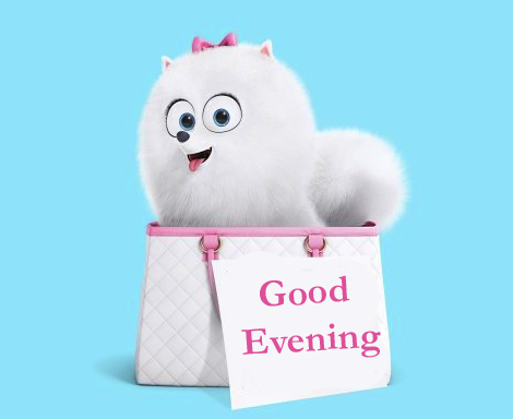 Beautiful and Cute Good Evening Card Picture