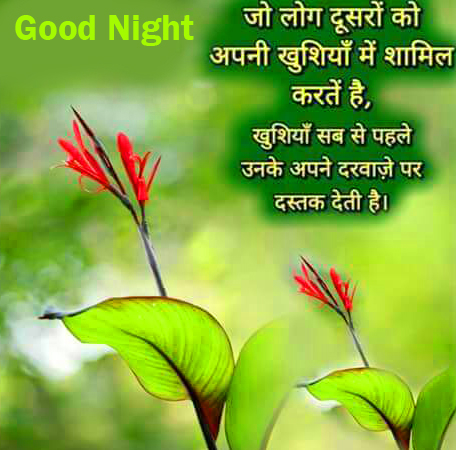 Beautiful and Lovely Hindi Quotes Good Night Image