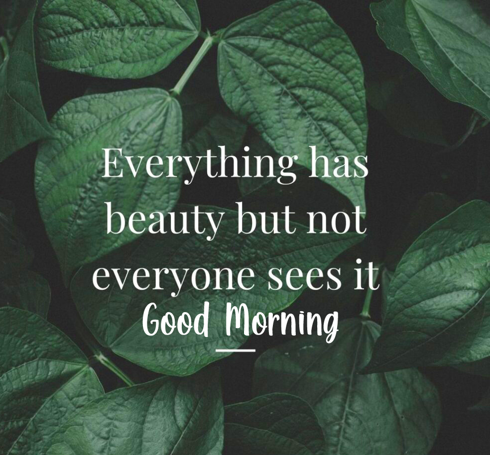 Beauty Leaf Quotes Good Morning Picture