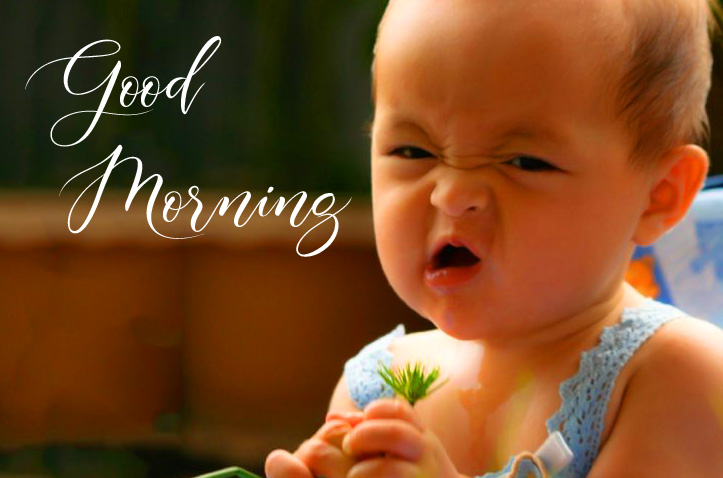 Cute Funny Good Morning Picture HD