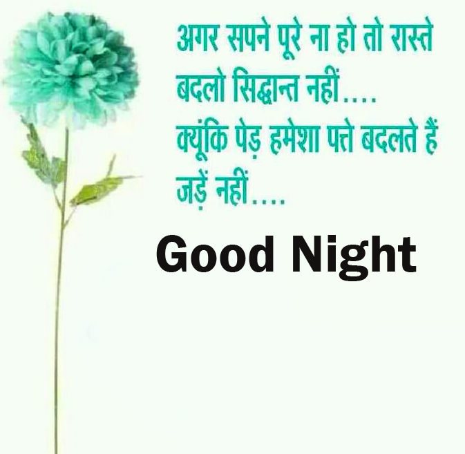 Flower with Hindi Quotes and Good Night Wish