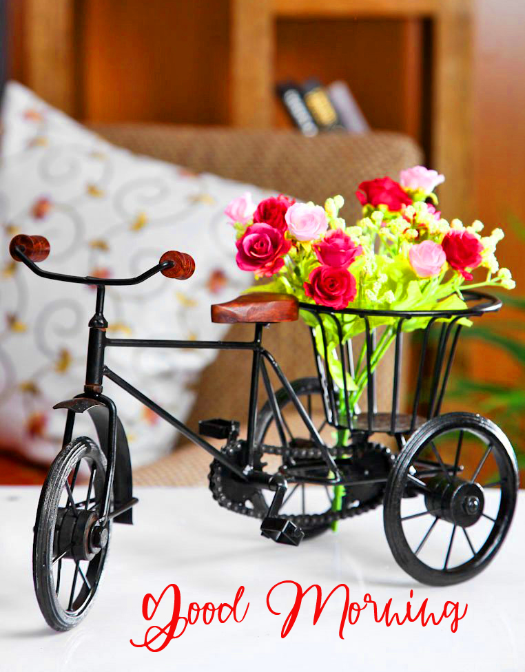 Flowers Cycle Pic with Good Morning Wish