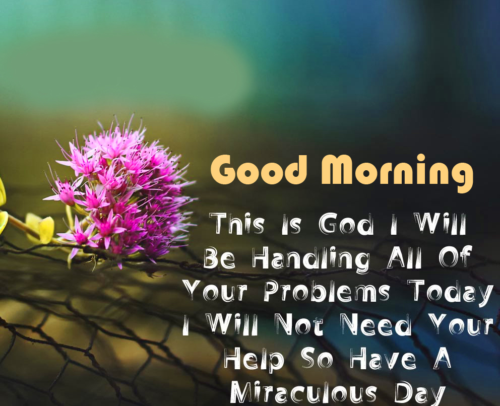 Flowers with God Quotes and Good Morning Wish