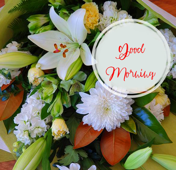 Flowers with Good Morning Wish