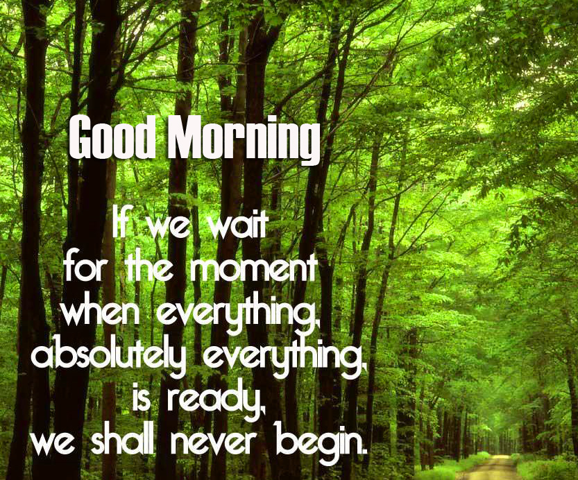 Full HD Beautiful Leaves Quotes Good Morning Pic