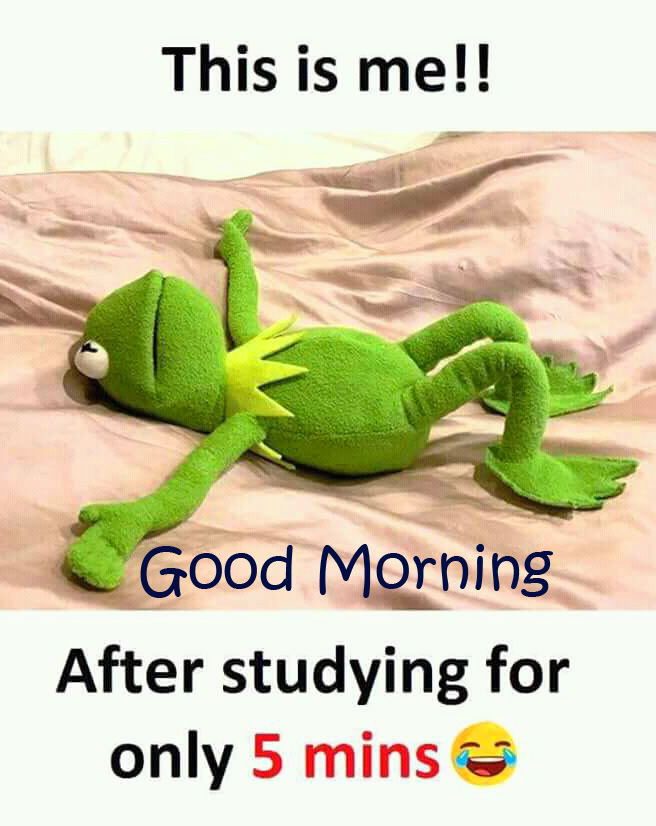 Funny Frog with Joke and Good Morning Wish