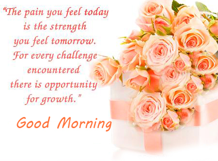 Gift Flowers with Good Morning Blessing Message