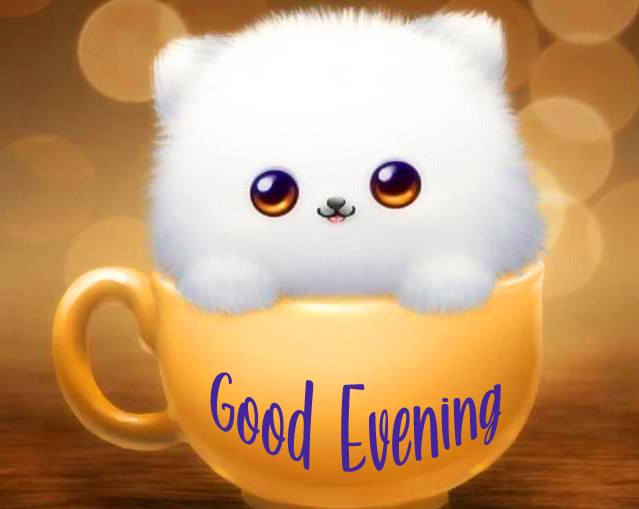 Good Evening Cute Bunny in Cup Pic