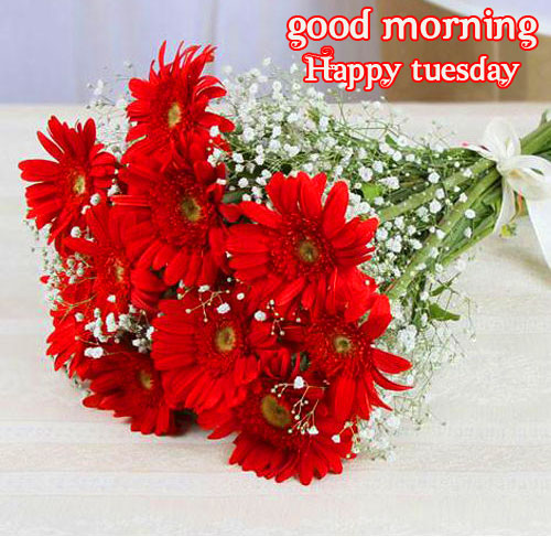 Good Morning Happy Tuesday Flowers Bouquet Picture
