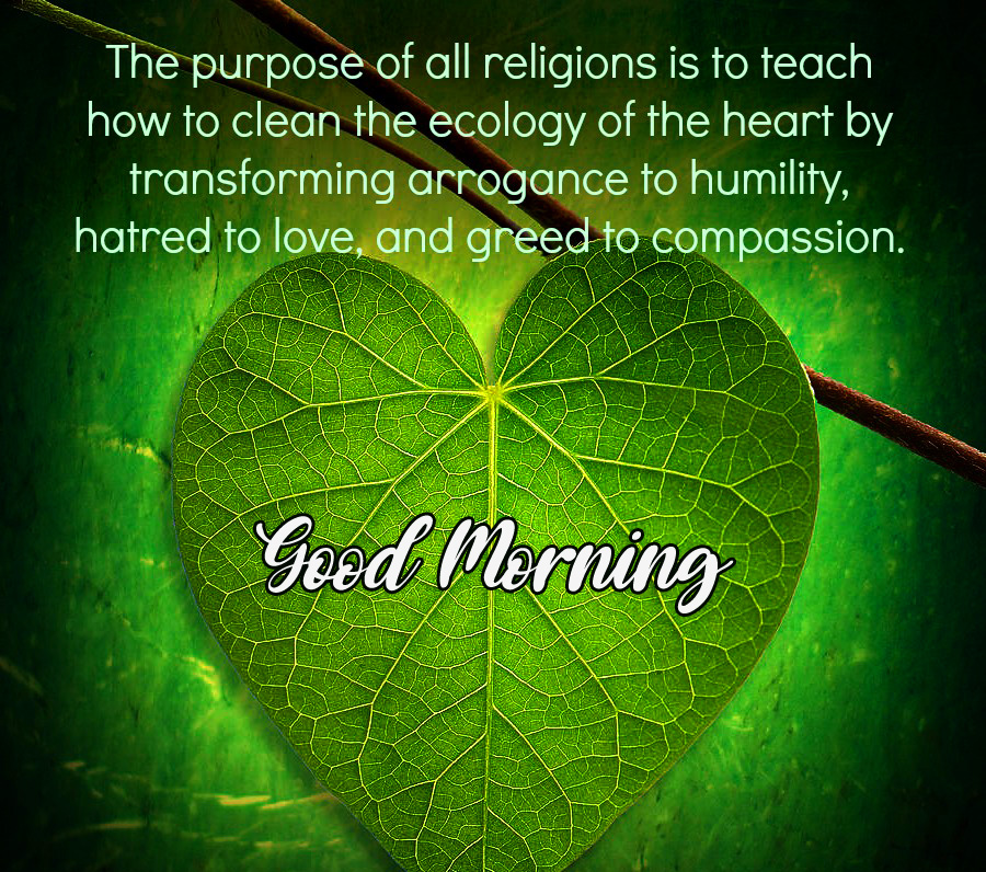 Good Morning Image with Leaf Quotes
