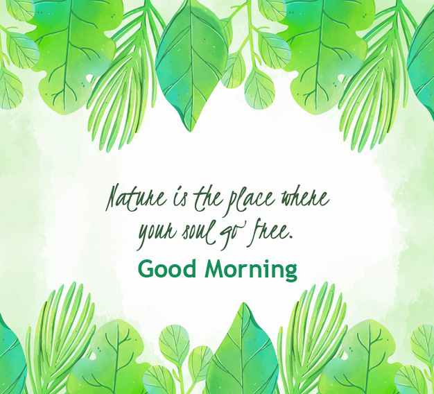Good Morning Leaf Quotes Painting Pic