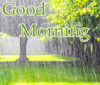Good Morning Rainy Image Full HD
