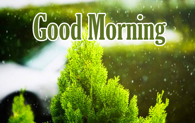 Good Morning Rainy Wallpaper and Photo