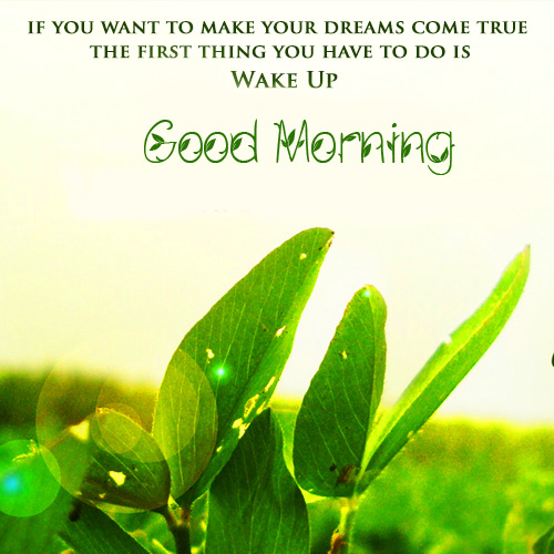 Good Morning Wake Up Leaves Quotes Picture