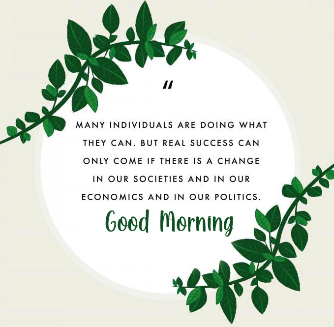 Good Morning with Beautiful Leaves Quotes