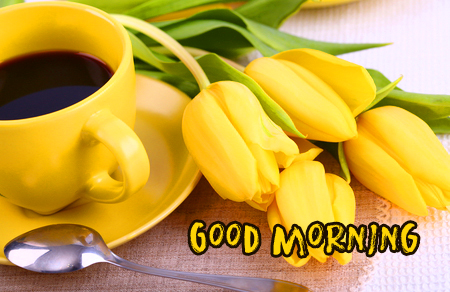Good Morning with Tulips and Coffee