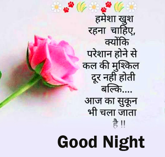 Good Night Quotes in Hindi with Rose
