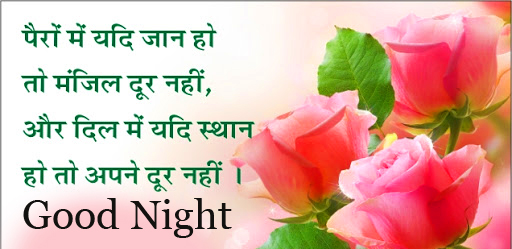 Good Night Wish with Roses and Hindi Quotes