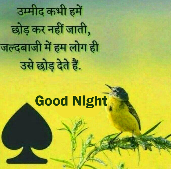 Good Night with Beautiful Quotes Image