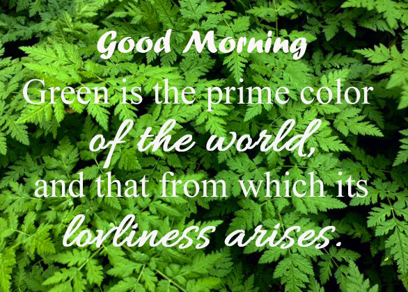 Greenery Leaves Quotes Good Morning Pic