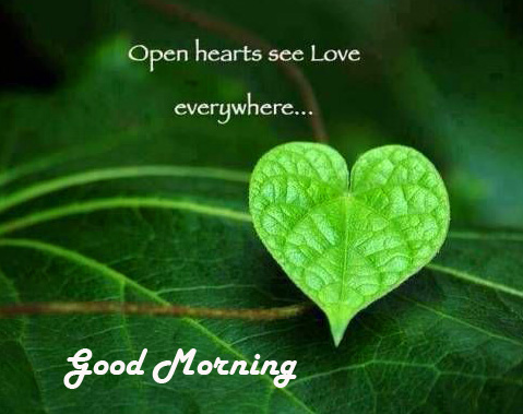 HD Heart Leaf Message Good Morning Pic