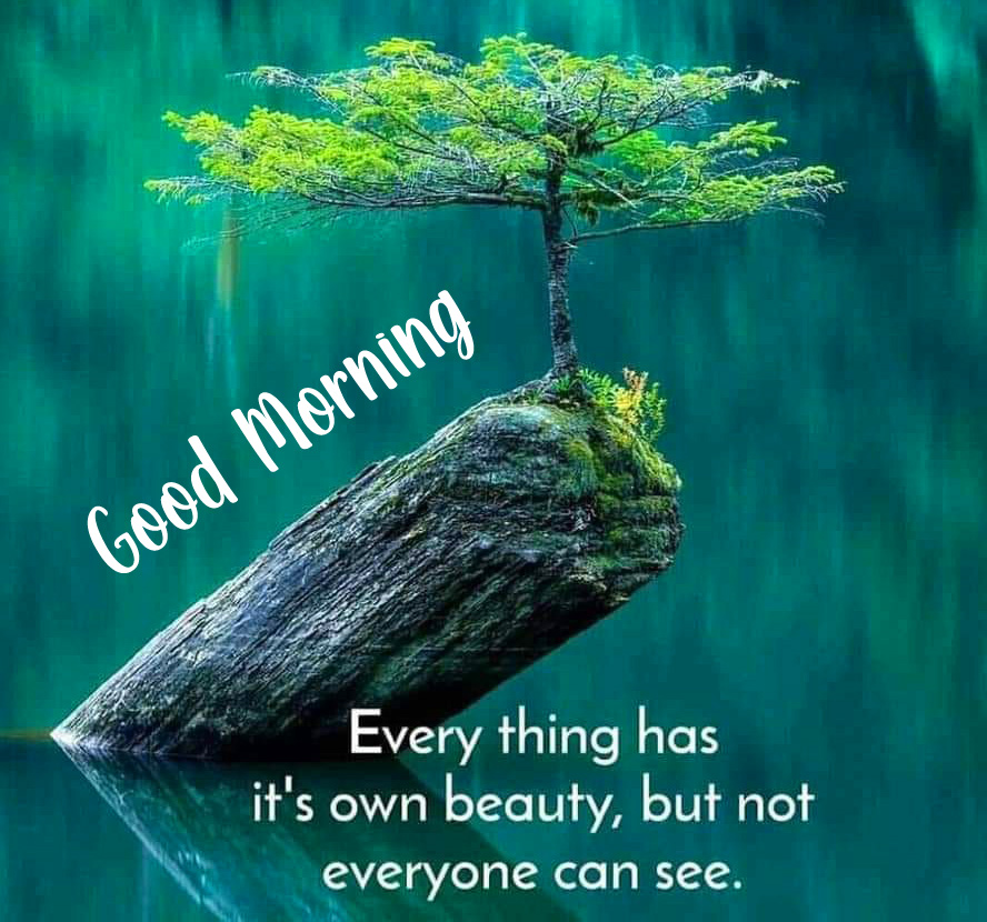 HD Leaf Quotes with Good Morning Wish